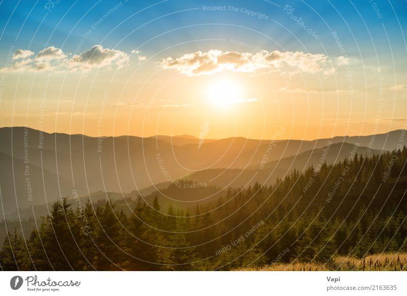 Sonnenuntergang in den Bergen mit Wald und großer glänzender Sonne schön Ferien & Urlaub & Reisen Tourismus Ausflug Abenteuer Ferne Freiheit Sommer Sommerurlaub