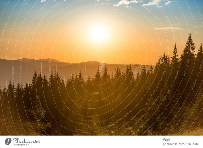 Sonnenuntergang in den Bergen mit Wald Himmel Natur Ferien & Urlaub & Reisen Himmel (Jenseits) blau Sommer Farbe schön grün weiß Baum Landschaft rot Wolken