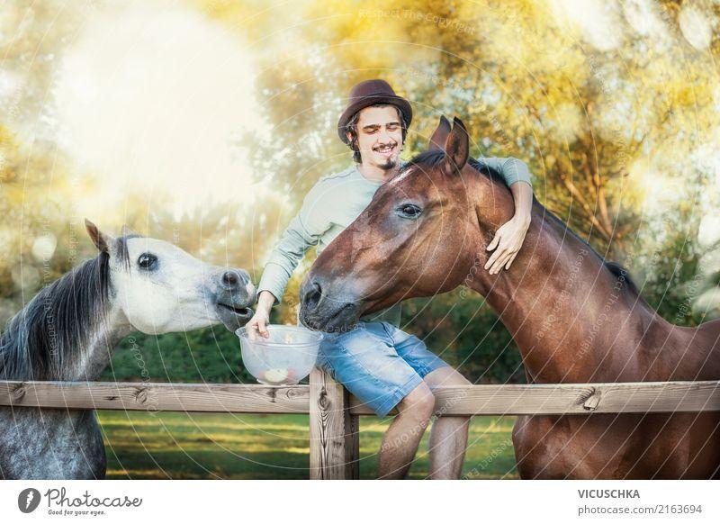Junger Kerl lacht und füttert Pferde Lifestyle Mensch maskulin Junger Mann Jugendliche 1 Natur Tier 2 Gefühle Stimmung Freude Glück Fröhlichkeit Lebensfreude