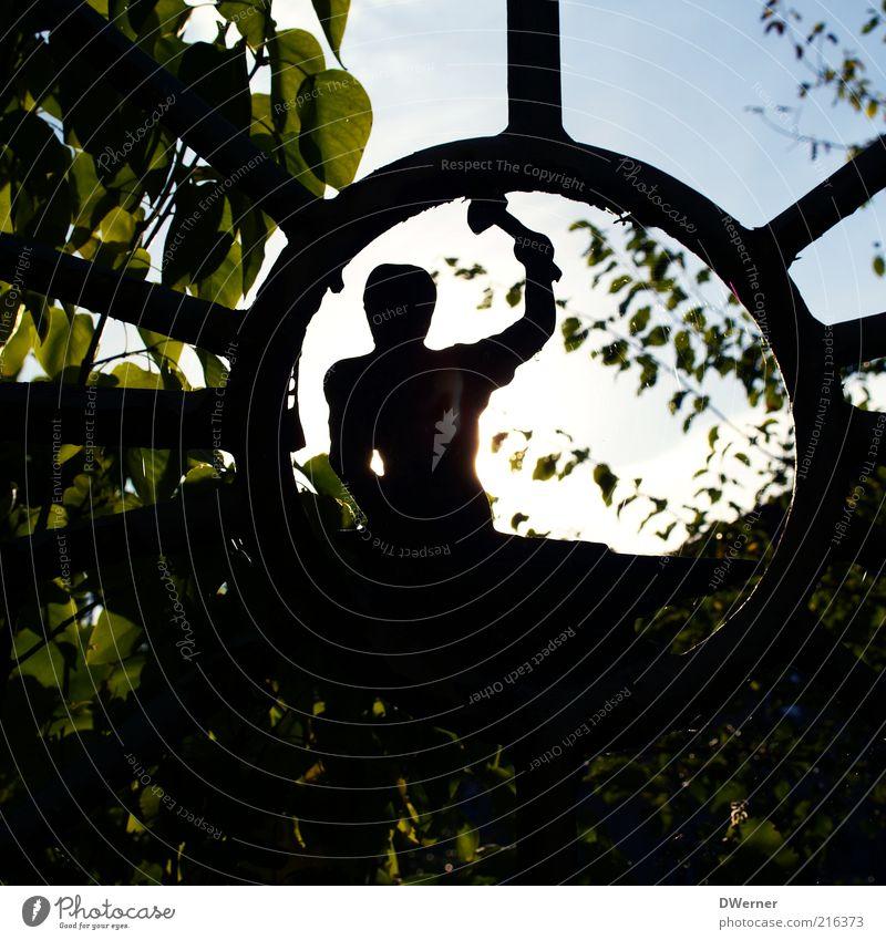 Blick durch den Eisernen Vorhang Himmel Natur Pflanze Sommer Blatt Umwelt Landschaft Metall Kunst Arbeit & Erwerbstätigkeit glänzend maskulin Industrie