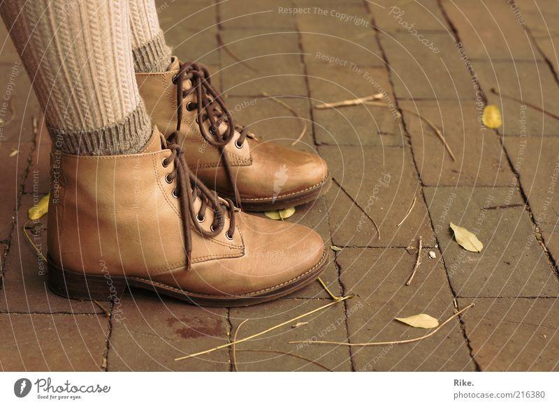 Auf dem Boden geblieben. Mensch Jugendliche schön Blatt Erwachsene Herbst feminin Stil Mode Fuß braun Schuhe elegant natürlich stehen 18-30 Jahre