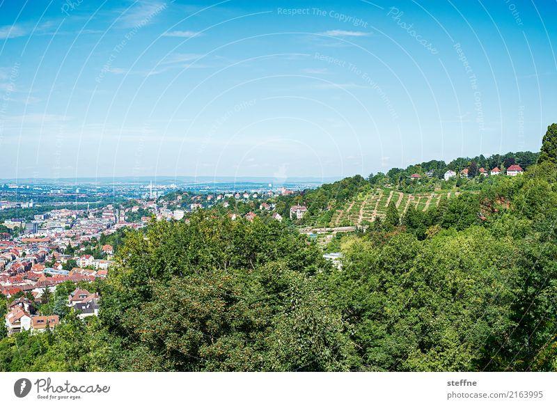Around the World: Stuttgart Reisefotografie Tourismus Ferien & Urlaub & Reisen Rundreise around the world steffne Aussicht Hügel Weinberg