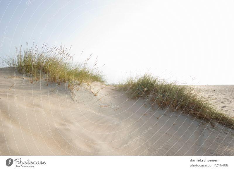 Costa de la Luz weiß Meer blau Sommer Strand Ferien & Urlaub & Reisen ruhig Ferne Erholung Sand hell Küste Wind Horizont Tourismus Sonnenbad