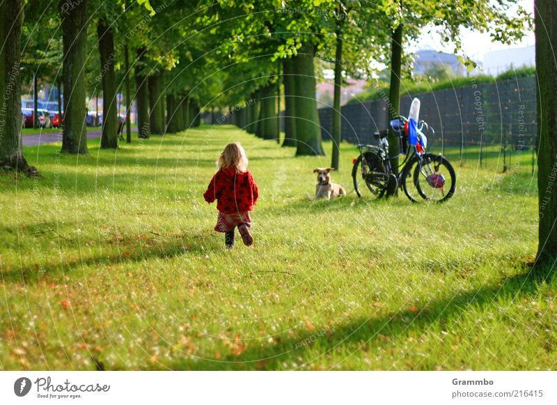 Die kleine Erdbeere Mensch Hund Baum Freude Tier Wiese Gras Kindheit gehen Fahrrad laufen Kleinkind Haustier Allee Wiedersehen