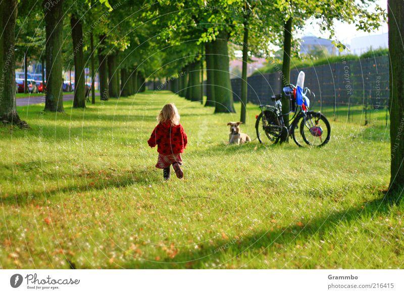 Die kleine Erdbeere Mensch Kleinkind Kindheit 1 1-3 Jahre Tier Haustier Hund gehen Allee Wiese Freude Wiedersehen Farbfoto Außenaufnahme Textfreiraum unten