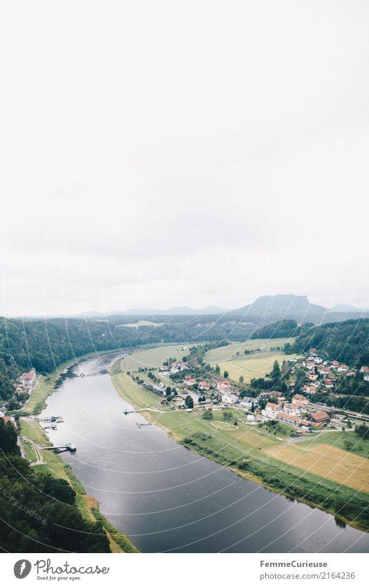 Wandern (17) Natur Sächsische Schweiz wandern Elbe Aussicht Kurort Luftaufnahme Fluss Wasser Wald Dorf Kleinstadt Idylle Ausflugsziel Farbfoto Außenaufnahme