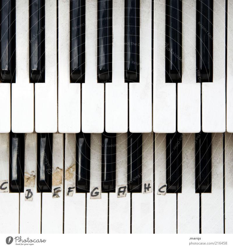 Tonleiter Musik Schilder & Markierungen lernen Schriftzeichen Hilfsbereitschaft Lifestyle Buchstaben Kultur Zeichen Konzentration Klaviatur Klavier