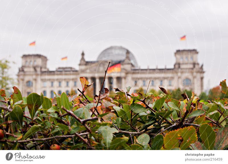 Fokusverschiebung Natur Pflanze Ferien & Urlaub & Reisen Berlin Architektur Gebäude Park Deutschland Perspektive Fahne Bauwerk Deutsche Flagge historisch