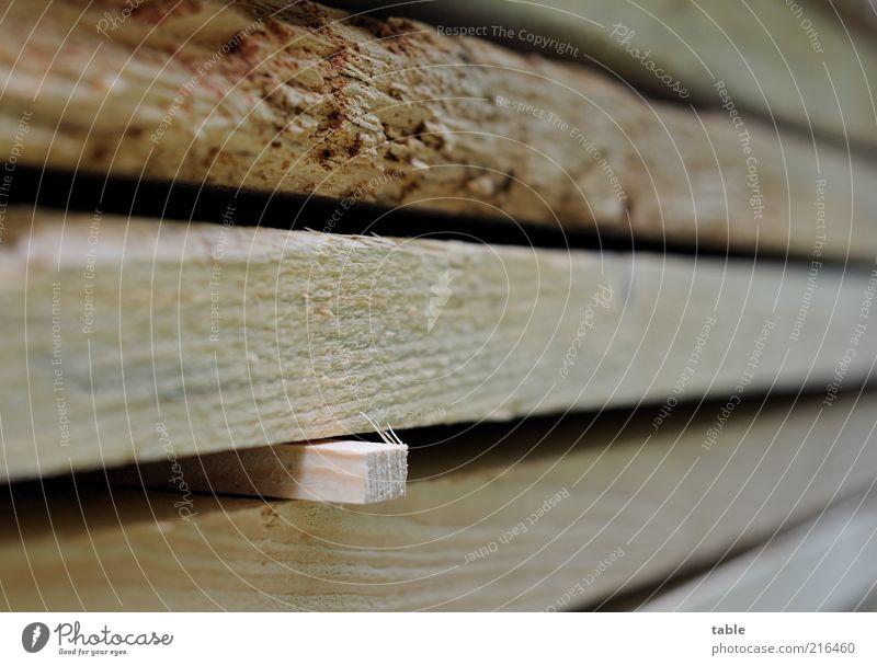 verklemmt Holz Ordnung Baustelle liegen Handwerk Holzbrett Material Stapel trocknen eckig Maserung Klotz Detailaufnahme Holzleiste Holzstapel