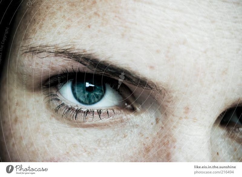 She's got the look Mensch Frau Jugendliche blau Gesicht Erwachsene Auge feminin glänzend Haut maskulin Junge Frau leuchten 18-30 Jahre beobachten Sommersprossen