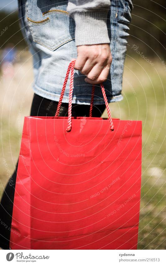 Shopping Frau Mensch Hand rot Freude Leben Stil Erwachsene Freizeit & Hobby Lifestyle Geschenk Tasche Wohlgefühl Überraschung Tüte tragen