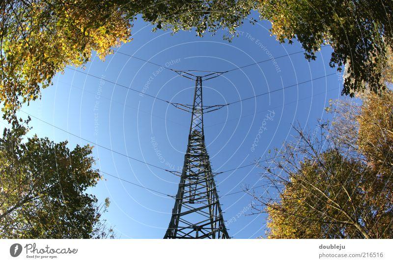 energie im grünen bereich Natur Himmel Herbst Energie Energiewirtschaft Elektrizität Strommast Hochspannungsleitung Waldlichtung transferieren Wolkenloser Himmel Vorsicht Hochspannung