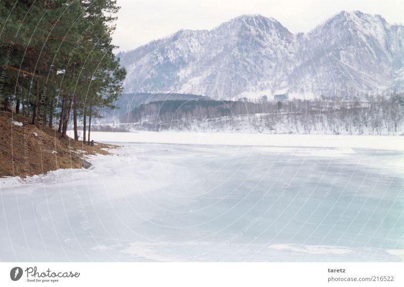 unberührtes Eis Ferne Freiheit Winter Schnee Winterurlaub Umwelt Natur Klima Schönes Wetter Frost Berge u. Gebirge Altai Gebirge Seeufer Flussufer authentisch