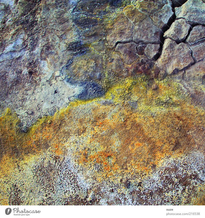 Bunte Mischung Umwelt Urelemente Erde alt außergewöhnlich schön trocken Schwefel Boden Riss Island Natur Stein Naturstein Farbfoto mehrfarbig Außenaufnahme