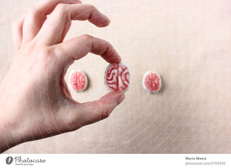 Brain picking. Hand mit Gummi-Gehirn Labor Gehirn u. Nerven wählen Denken lernen außergewöhnlich Neugier Verantwortung Weisheit Erfahrung erleben innovativ