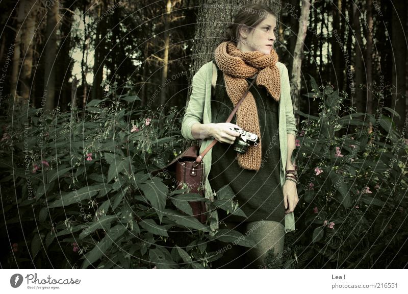 Waldfee Mensch Jugendliche ruhig Wald Herbst feminin Wachstum stehen Sträucher retro Kleid Fotokamera 18-30 Jahre Gelassenheit brünett genießen