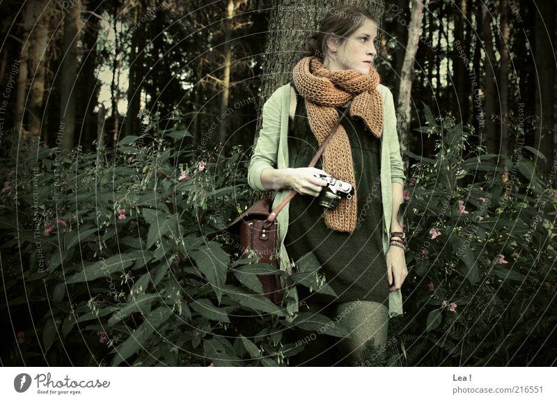 Waldfee Mensch Jugendliche ruhig Herbst feminin Wachstum stehen Sträucher retro Kleid Fotokamera 18-30 Jahre Gelassenheit brünett genießen