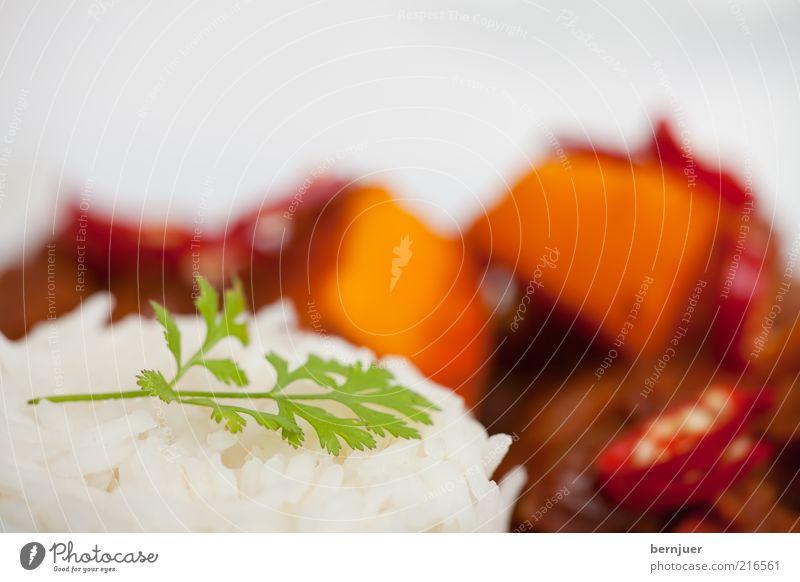 She didn't like the Cilantro weiß gelb Lebensmittel heiß Gemüse Kräuter & Gewürze lecker Teller Indien Mahlzeit Samen Kürbis Haufen Reis Chili Ernährung