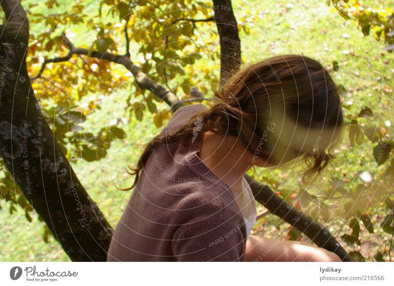 imagine.. feminin Junge Frau Jugendliche Haare & Frisuren 1 Mensch Natur Sonnenlicht Herbst Schönes Wetter Baum Blatt Buche Park Wiese Wald brünett langhaarig
