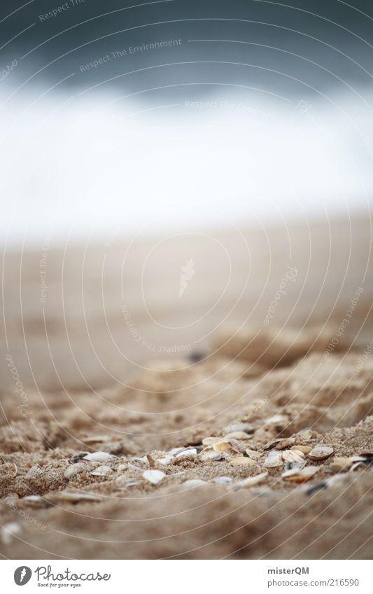 Ocean. Umwelt Natur Landschaft Urelemente Sand Luft Wasser ästhetisch Zufriedenheit Meerwasser Wellen Schaum Gischt Muschel Muschelschale Strandgut