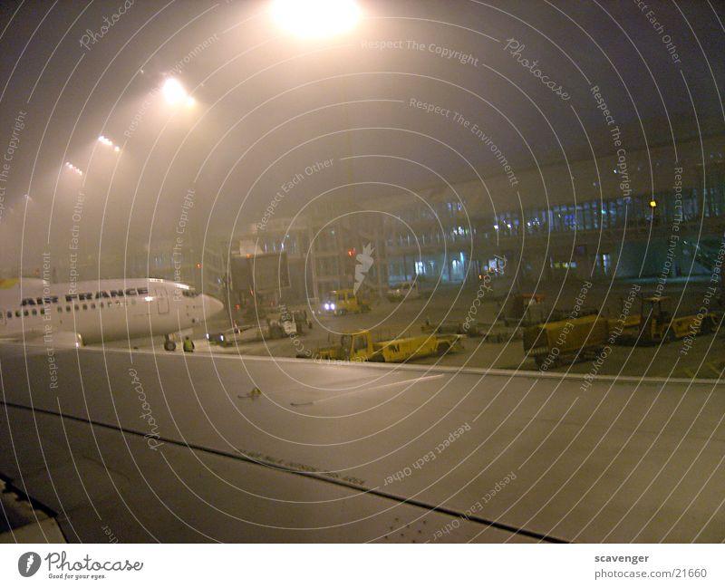 Fogflight Flugzeug Nebel München Schwanz Tragfläche Lichternebel laden entladen Gebäude Vorbereitung Luftverkehr Flughafen Scheinwerfer Schatten