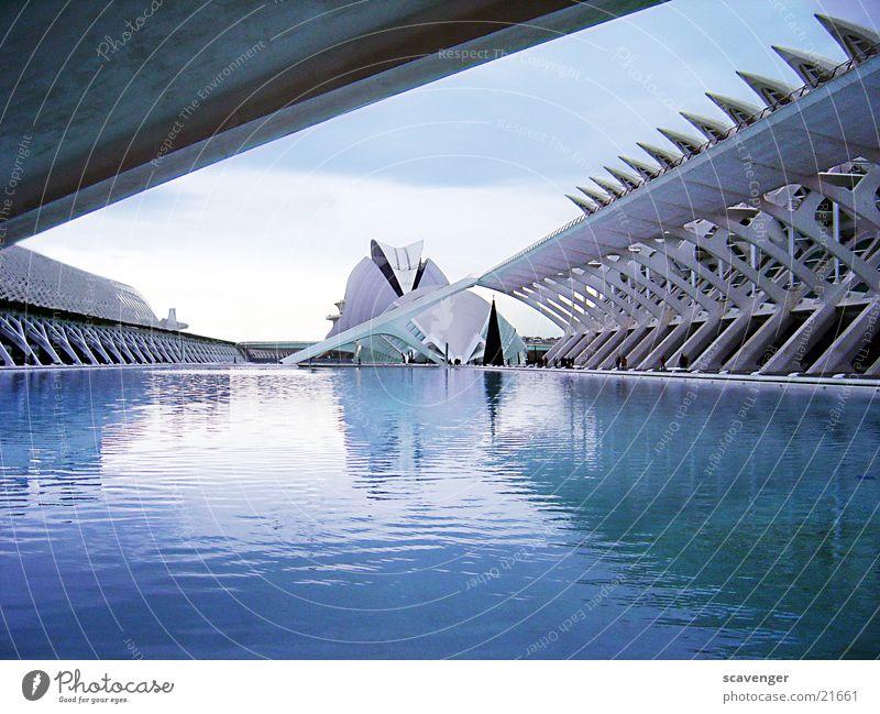 Museum Valencia High-Tech groß See Teich Schwimmbad Spanien Gebäude IMAX Kino Reflexion & Spiegelung Architektur modern Becken blau Himmel Denkmal Zacken Stein