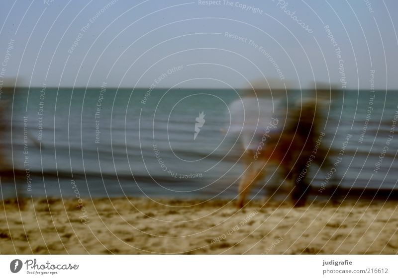 Strandbewegung Ferien & Urlaub & Reisen Tourismus Sommer Meer Mensch Menschengruppe Wasser Himmel Küste Ostsee Bewegung Erholung gehen Stimmung Zusammenhalt