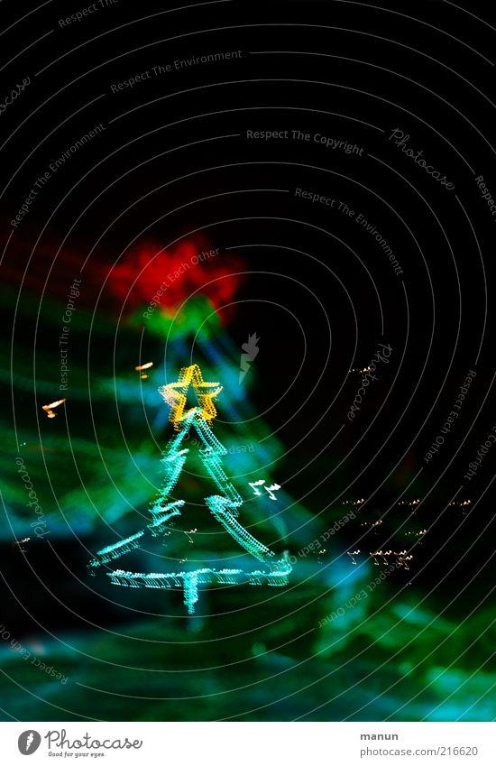 Weihnachtsbaum Weihnachten & Advent Feste & Feiern glänzend Fröhlichkeit Stern (Symbol) Weihnachtsbaum Dekoration & Verzierung außergewöhnlich Zeichen leuchten Vorfreude festlich Nachtaufnahme