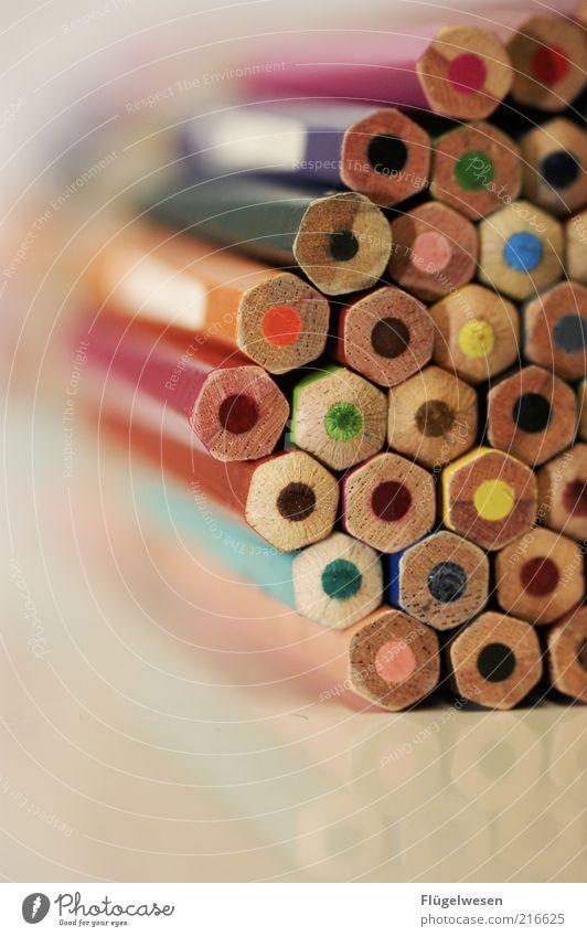 Ein Bund Stifte Bildung Kindergarten Schreibwaren Schreibstift zeichnen Farbstift malen Bleistift Farbstoff Kunst mehrfarbig Farbfoto Innenaufnahme Unschärfe