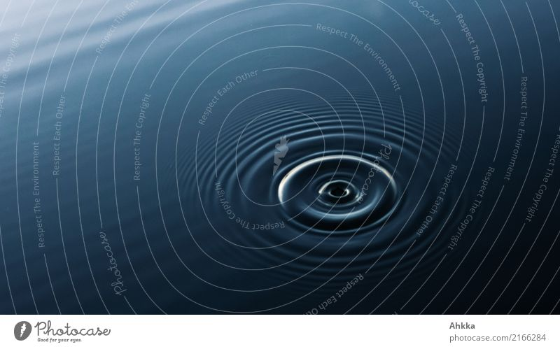 Schwingungen (2) blau Wasser Erholung ruhig Hintergrundbild Bewegung Gesundheitswesen Stimmung Zufriedenheit Wachstum ästhetisch einzigartig Energie Kreis