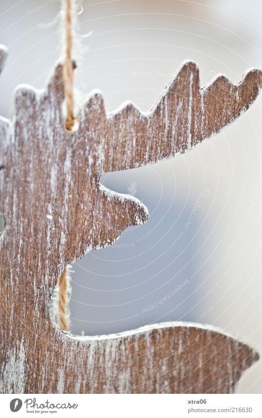 bald ist es wieder soweit... Weihnachten & Advent braun Schnur hängen Horn Anschnitt Bildausschnitt Weihnachtsdekoration Elch Weihnachtsfigur Bastelmaterial