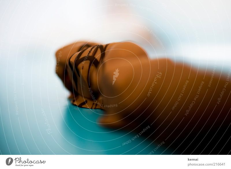 Schoko-Früchte hell braun Lebensmittel Ernährung süß türkis Süßwaren lecker Schokolade Dessert Geschmackssinn Kalorie verziert Speise Unschärfe Kalorienreich