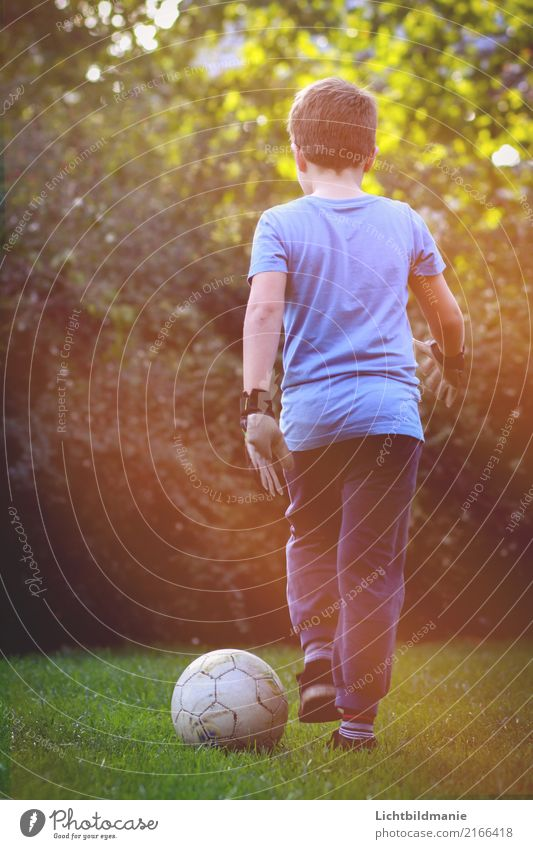 Fußball Leidenschaft Kind Mensch Natur Freude Leben Wiese Sport Junge Spielen Garten Freizeit & Hobby maskulin Körper Kindheit Erfolg Lebensfreude