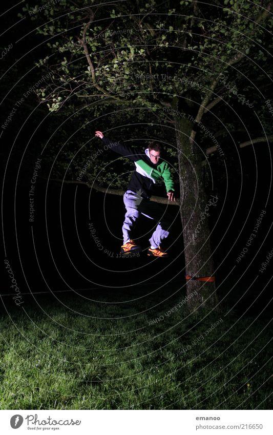 slack.jump.night. Mensch Natur Jugendliche Baum Freude Freiheit springen Gras Erwachsene Bewegung Kraft maskulin einzigartig Ast sportlich 18-30 Jahre