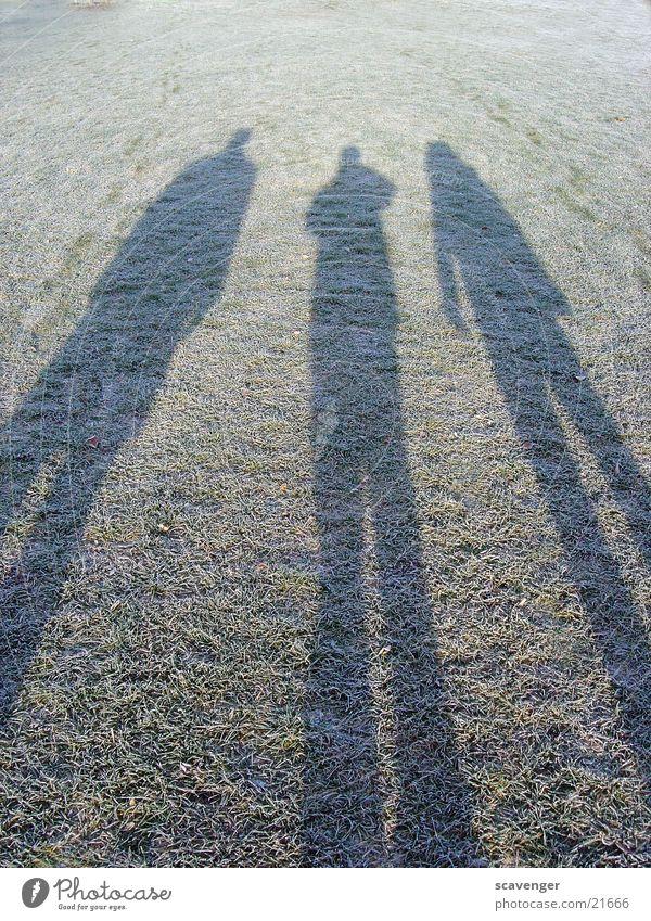Morgenschatten Wiese Gras Sonnenaufgang lang nah Stil Ferne Menschengruppe Schatten mänlich Seil Schnee Eis