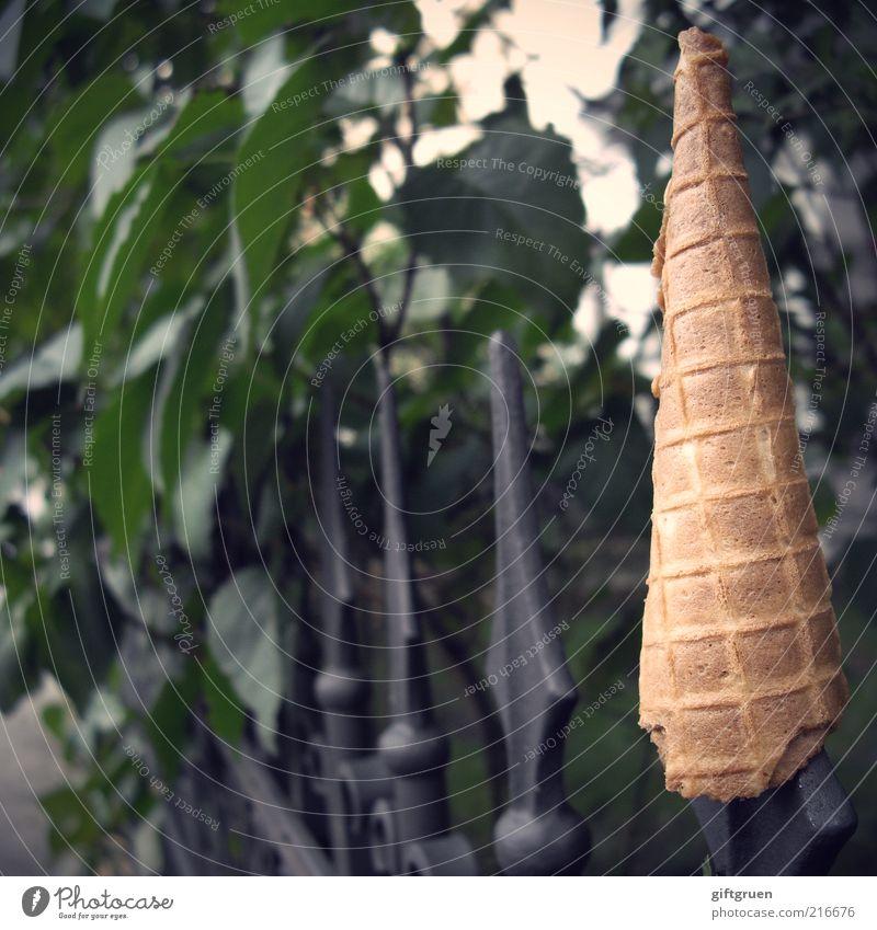 mit essen spielt man nicht! lustig außergewöhnlich Lebensmittel verrückt Ernährung Speiseeis süß Sträucher Spitze Müll Süßwaren Humor seltsam Witz verkehrt kegelförmig