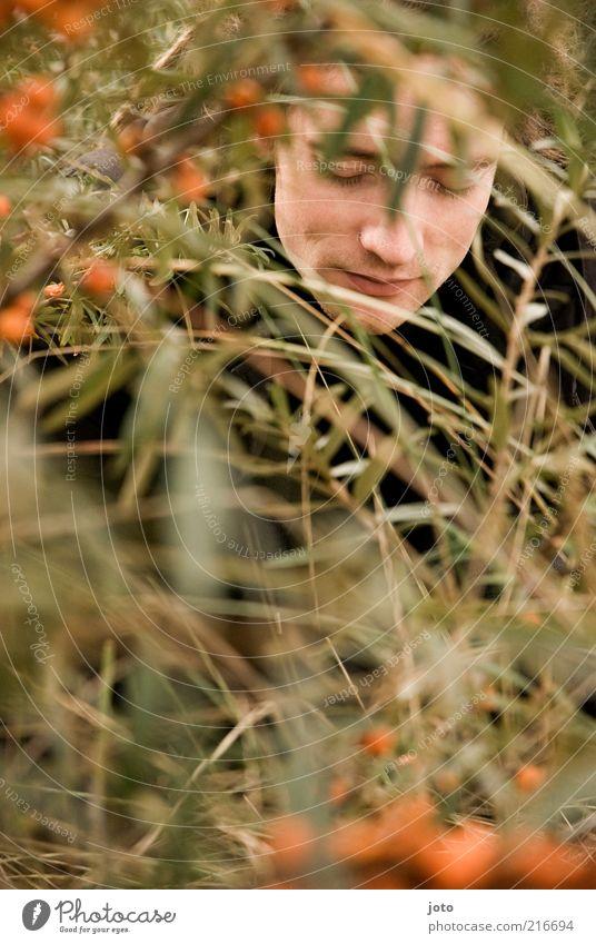 im Sanddornbusch I Natur Jugendliche Mann Pflanze Einsamkeit Junger Mann 18-30 Jahre Gesicht Erwachsene orange maskulin Frucht Zufriedenheit Sträucher frisch ästhetisch