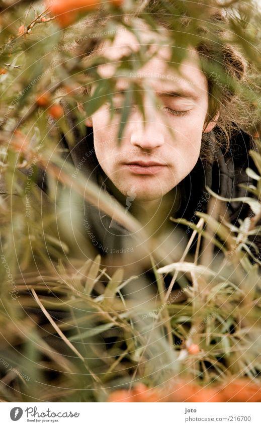 im Sanddornbusch II Frucht maskulin Junger Mann Jugendliche Erwachsene Gesicht Natur Pflanze Ast Sträucher entdecken Erholung träumen ästhetisch Zufriedenheit