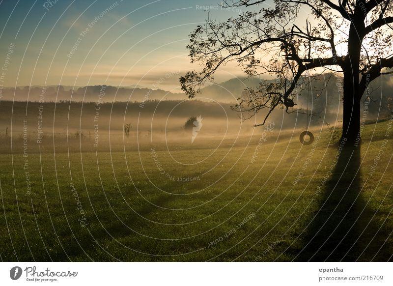 Natur schön Himmel Baum Sonne grün blau Herbst Gras grau Landschaft Nebel Horizont Coolness Insel