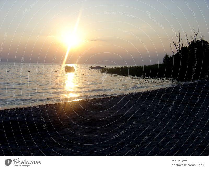 Sonnenuntergang am Gardasee Wasser Himmel weiß Baum blau Strand dunkel See Wasserfahrzeug hell Beleuchtung orange Wellen Ast Abendsonne