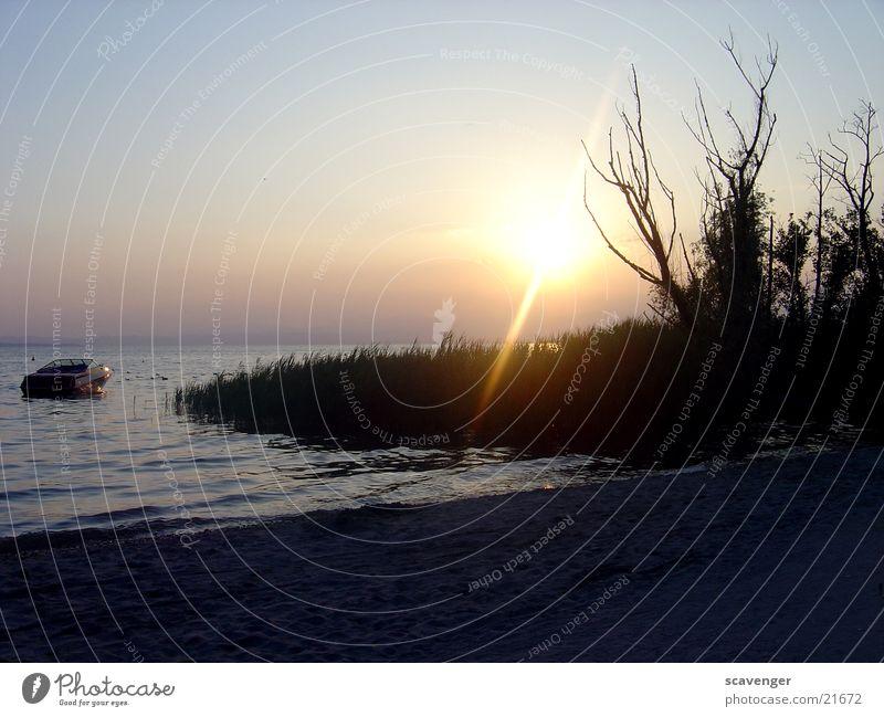 Sonnenuntergang am Gardasee Sonnenstrahlen weiß Licht Abendsonne Sonnenaufgang dunkel See Wellen Baum Wasserfahrzeug Strand schwarz Beleuchtung blau hell Himmel
