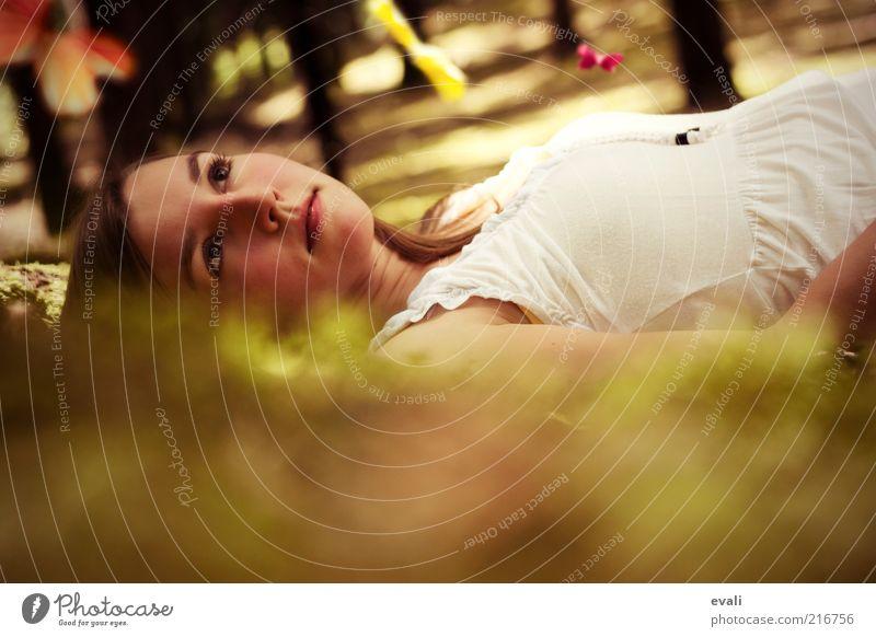 Dream Catcher Mensch Frau Jugendliche grün Erholung Junge Frau Tier Wald Gesicht 18-30 Jahre Erwachsene feminin liegen träumen genießen Hoffnung