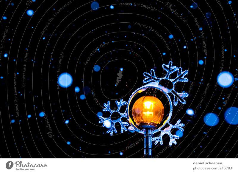 leichter Schneefall, -15 Grad Winter Eis Frost blau gelb schwarz weiß Schneeflocke ruhig Schweben Nacht Kunstlicht Blitzlichtaufnahme Kontrast Low Key leuchten