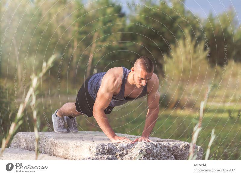 Liegestütze beim Outdoor Training im Park Sommer Gesunde Ernährung Sonne Gesundheit Bewegung Sport Gesundheitswesen Freizeit & Hobby Kraft Fitness sportlich