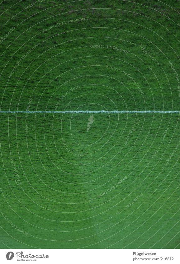 Christoph Daum Sport Ballsport Sportstätten Fußballplatz Linie Seitenlinie Farbfoto Außenaufnahme Tag Sportrasen weiß grün Detailaufnahme Menschenleer