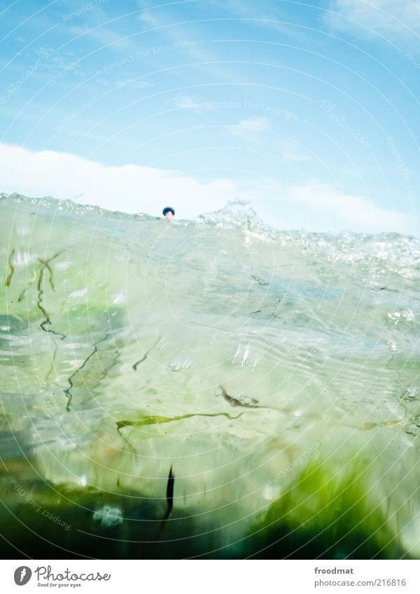 suchbild Himmel Wasser Ferien & Urlaub & Reisen Sommer Meer Umwelt Kopf Wellen dreckig Urelemente Schönes Wetter Umweltschutz Sommerurlaub Algen Umweltverschmutzung Mensch
