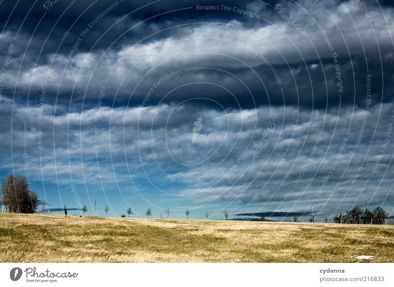 Drachensteigezeit Mensch Himmel Natur schön Wolken ruhig Ferne Wiese Freiheit Herbst Landschaft Umwelt Wege & Pfade Ausflug einzigartig Spaziergang