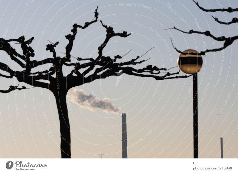 am rhein Himmel Natur Baum Sommer Umwelt Landschaft Luft Lampe Wetter Klima Industrie Turm Ast Laterne Schönes Wetter Rauch