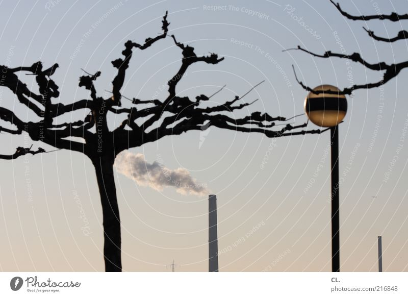am rhein Umwelt Natur Landschaft Luft Himmel Wolkenloser Himmel Klima Wetter Schönes Wetter Baum Turm Schornstein Umweltverschmutzung Lampe Rauch Laterne