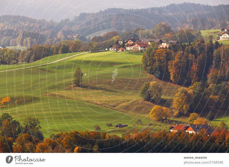 Österreichisches Dorf auf Berghügeln in den Alpen Natur Ferien & Urlaub & Reisen Sommer grün Landschaft rot Haus Ferne Wald Berge u. Gebirge Straße gelb Herbst